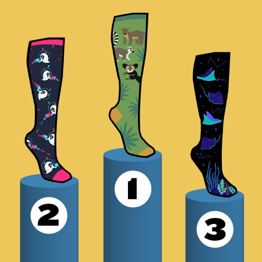 Our Annual Design a Sock Contest: Every September